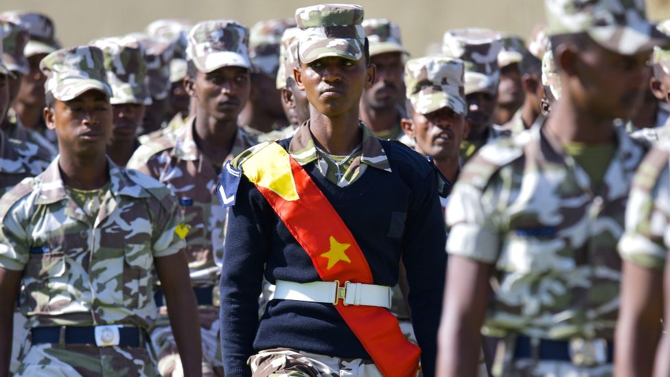 TDF - Tigray Defence Forces