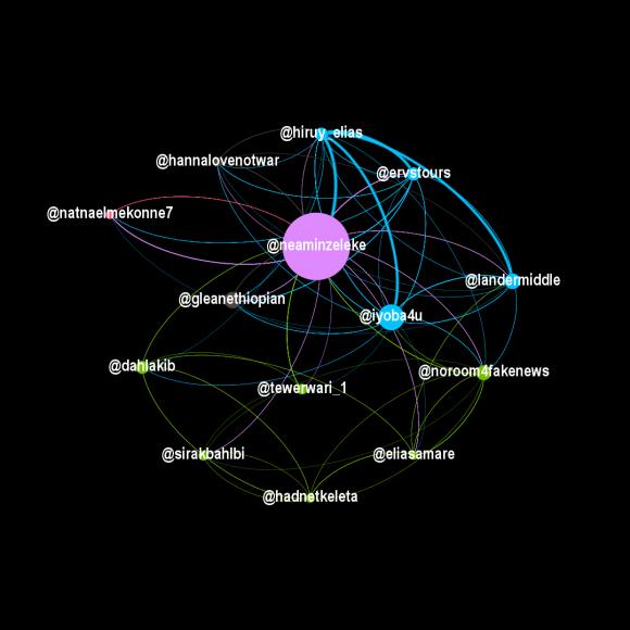 Figura 12: questo grafico mostra la sovrapposizione tra i conti più influenti nelle reti eritree e GLEAN, al 7 marzo 2021. I nodi verdi sono conti eritrei, mentre i nodi blu e rosa sono gestiti da etiopi.